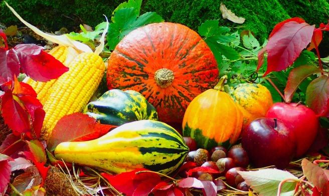 autumn-2851907_1920.jpg